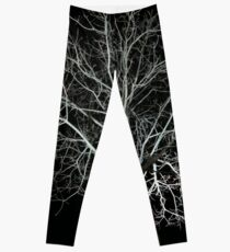 Dead tree Leggings