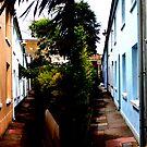 Back Street Brighton by mikebov
