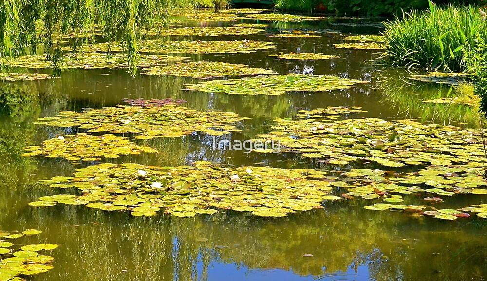 Claude Monet's Jardin de l'eau by Imagery