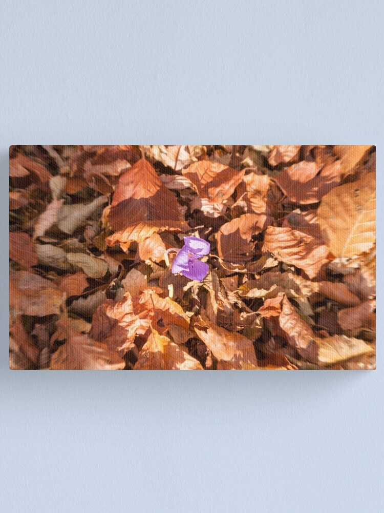 Alternate view of The end of autumn Canvas Print