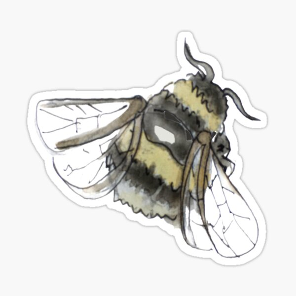 Fluffy Bumblebee Illustration in Watercolor Sticker