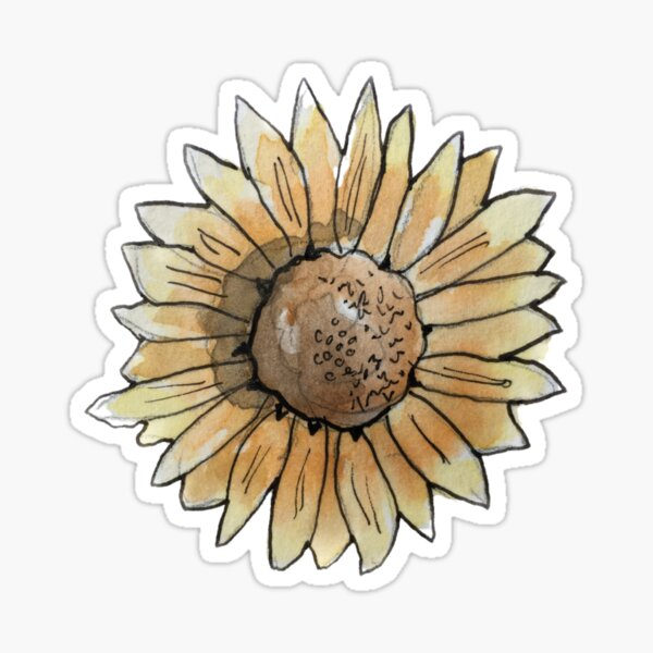 Burnt Orange Sunflower Illustration in Watercolor Sticker