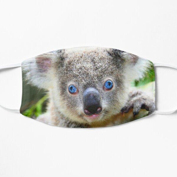 Koala blue eyes Masque taille M/L