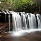 Oneida Waterfall Wearing A Summer Veil by Gene Walls