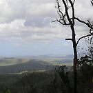 Across the mountains - Townsville, Queensland by Karen Stackpole