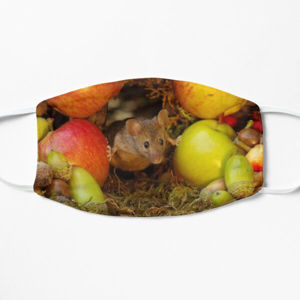 George the mouse in a log pile house - stand back apples super mouse coming through Flat Mask