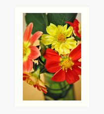 Blazing Hot Dahlias Art Print
