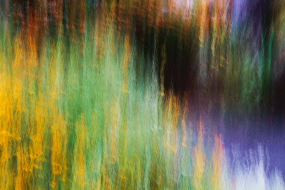 Down The Rabbit Hole by Steve Belovarich