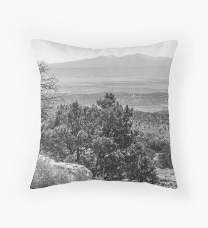 Arizona II Throw Pillow