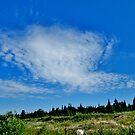 Clouds, Beaver Island, MI by F.  Kevin  Wynkoop