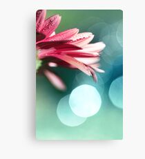 Nature's Dreaming Canvas Print
