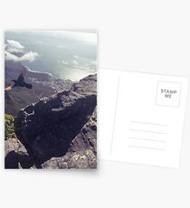 Red Winged Starling taking flight - Table Mountain  Postcards
