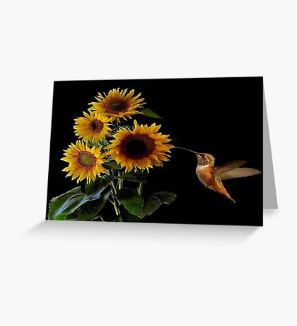SUNFLOWER SUMMER~ Greeting Card
