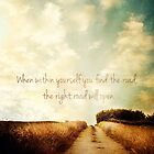 The Right Road by Sybille Sterk