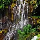 Panther Creek Falls by Jennifer Hulbert-Hortman