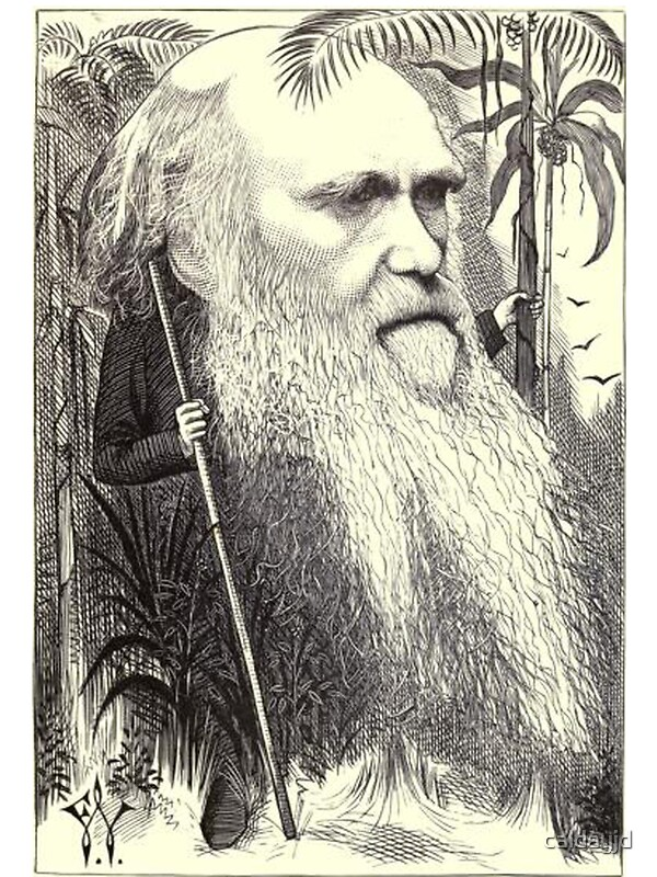 charles darwin in the 19th century essay Charles darwin lived a fairly quiet and studious life, yet became one of the most controversial figures of the 19th century in 1838 darwin read an essay on.