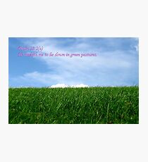 He Maketh Me Lie Down in Green Pastures Photographic Print