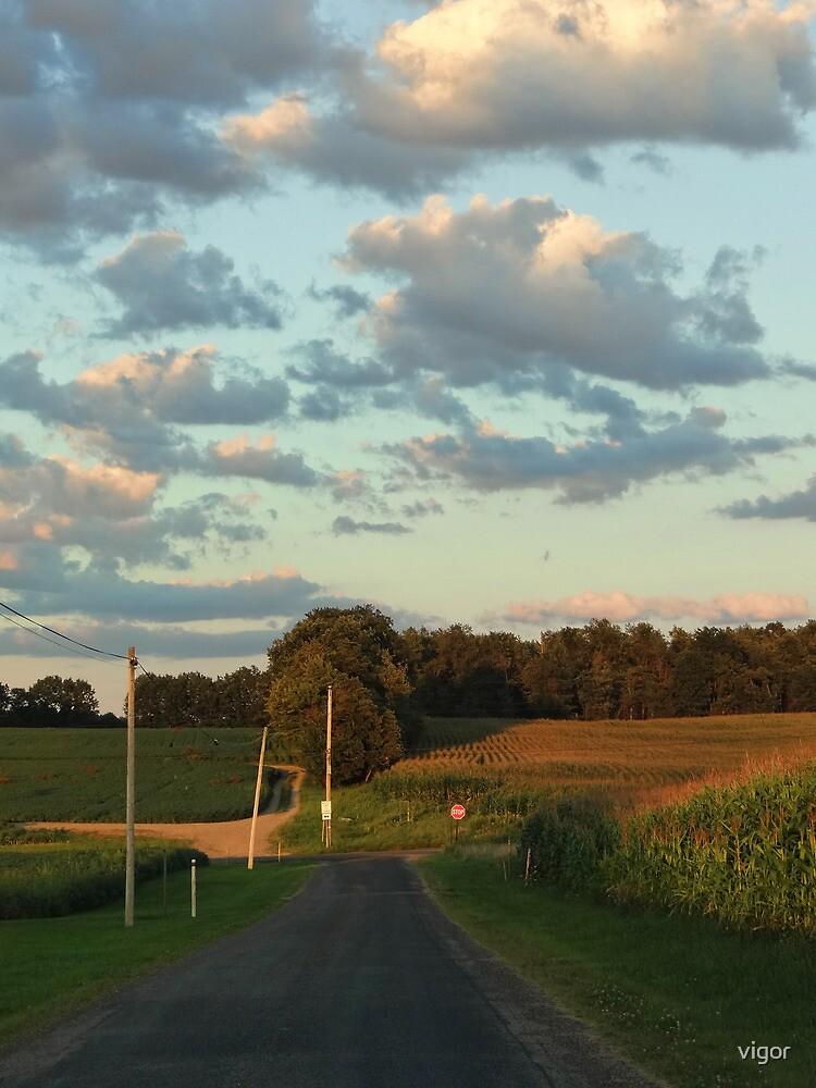 Rural Ride by vigor