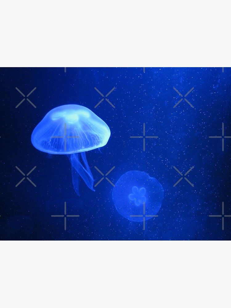 Blue Jellyfish by RyanDraws