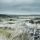 Washed Out Moors by kernuak