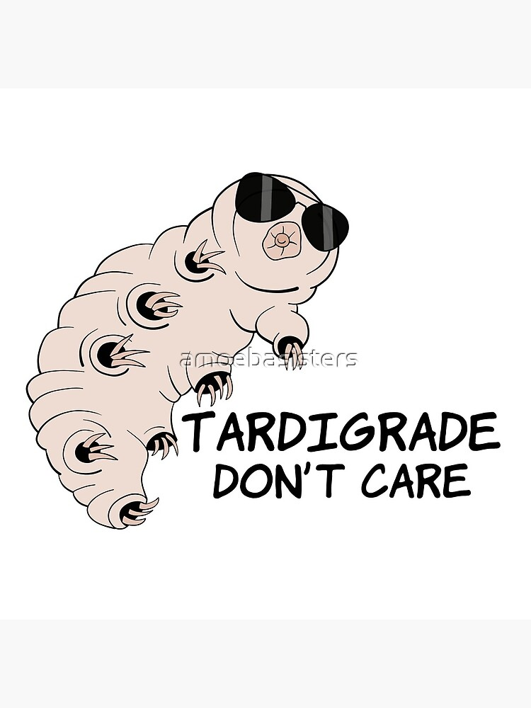 Tardigrade Don't Care by amoebasisters