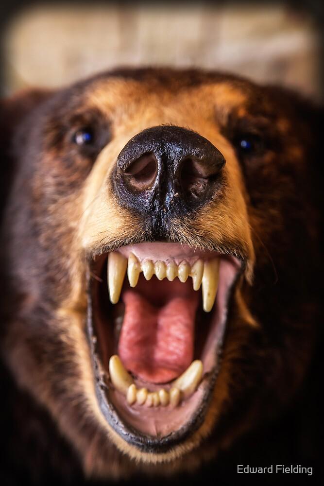 Grin and Bear It by Edward Fielding