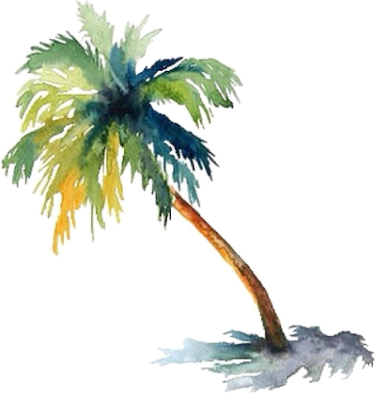 Quot Watercolor Palm Tree Quot Stickers By Shannonfraney Redbubble