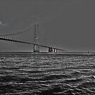 Great Belt Bridge  by imagic