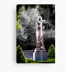 Still Beauty Canvas Print