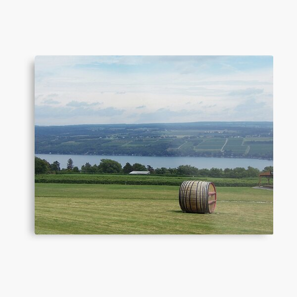 Now That's a View! Metal Print