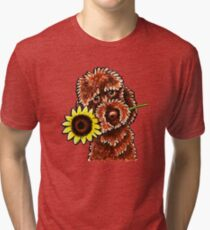 Sunny Chocolate Labradoodle Tri-blend T-Shirt