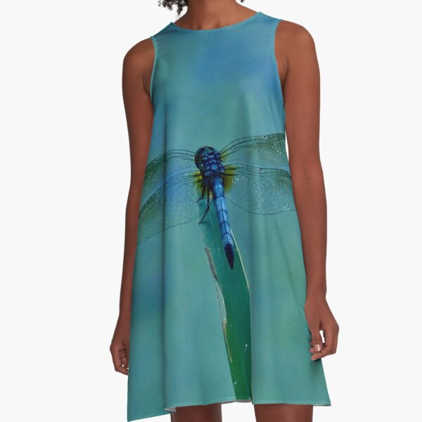 T-Bird's Dragonfly On Nature's Diving Board A-Line Dress