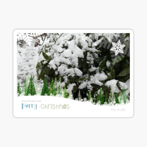 Snow Christmas  Sticker