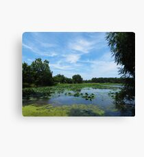East Harbor State Park - Scenic Overlook Canvas Print