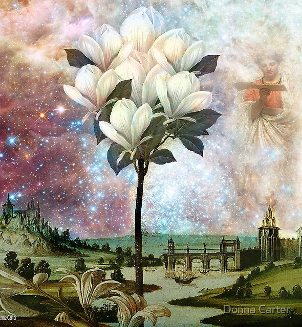 The Angel and the Magnolia Tree by Suzanne  Carter
