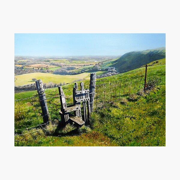 Sussex Stile Photographic Print