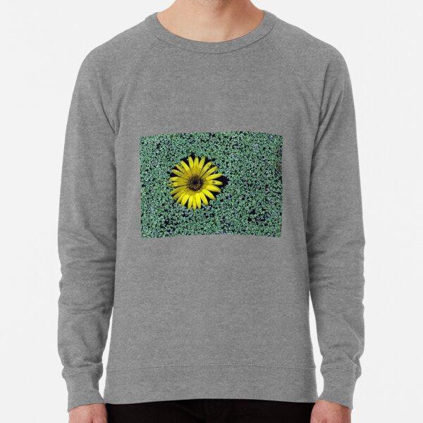 Yellow Flower in Duckweed with Three Little BUGS Lightweight Sweatshirt