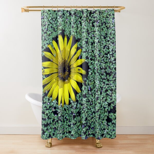 Yellow Flower in Duckweed with Three Little BUGS Shower Curtain