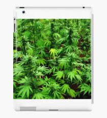 Marijuana (Weed) iPad Case/Skin