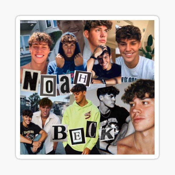 Collage de Noah Beck Sticker