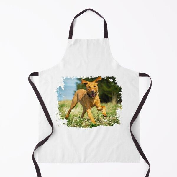 Red Fox Labrador Retriever puppy Apron