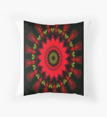 Mandala Spiral Notebook Throw Pillow