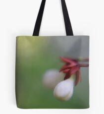 symmetric Tote Bag