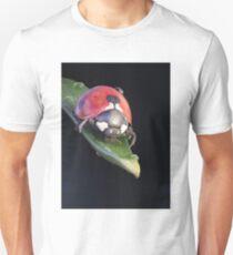 Ladybug Journey T-Shirt