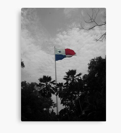 Panama Flag selective color Canvas Print