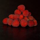 Wild Raspberries by Bami