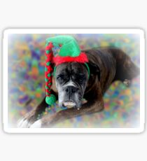 Boxer Dreaming Of Christmas Cookies Sticker