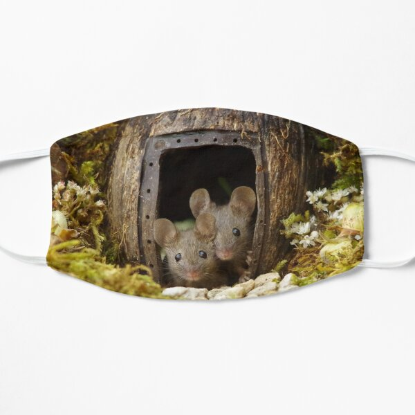 two wild mouse at the  wood pile door  Flat Mask