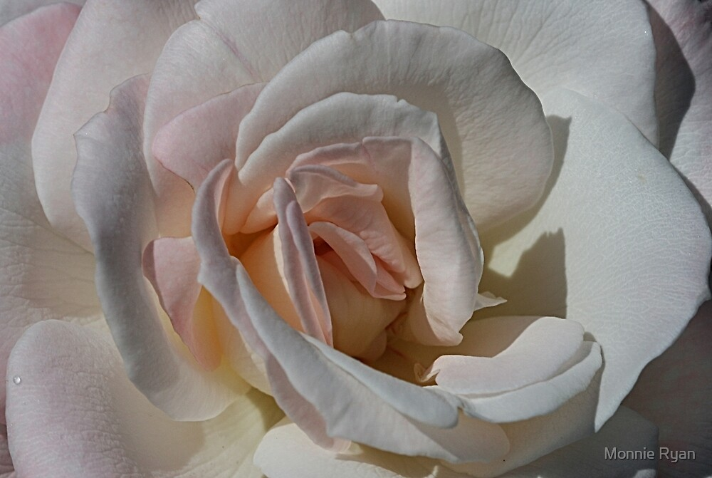 Pastel Petals by Monnie Ryan