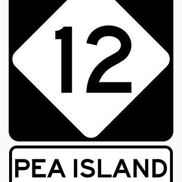 NC 12 - Pea Island by NewNomads